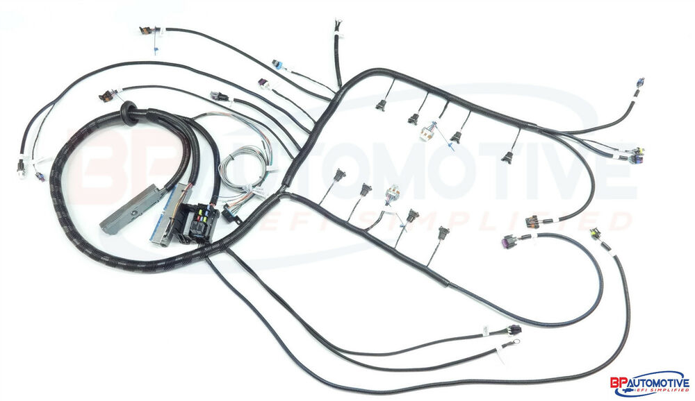 ls1 diy wiring harness kit