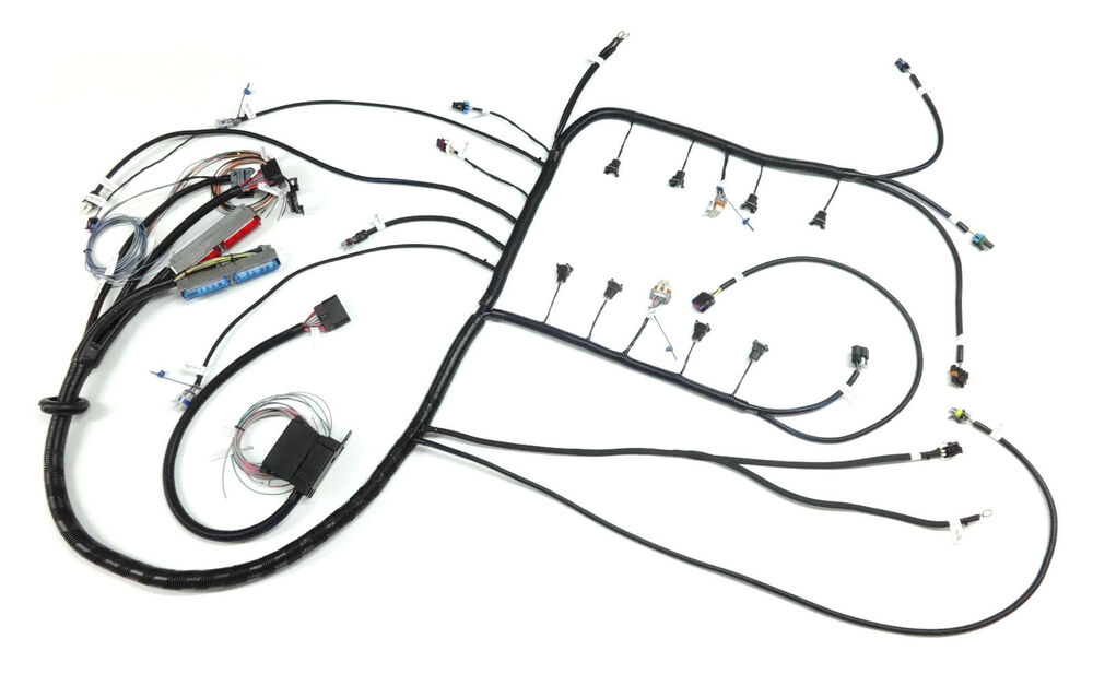 4 wire ls wiring harness