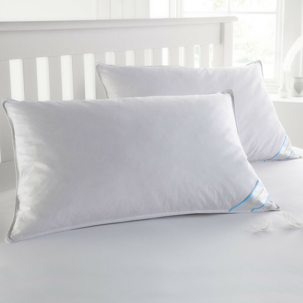 Standard Bed Pillows Sweet Home Collection Usa Finished Standard Down Feather Bed Pillows 2 Pack 616316843660 Ebay