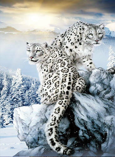 3d Magic Eye Moving Wallpapers Snow Leopard Lenticular 3d Picture Animal Poster Painting