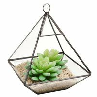 Hanging Clear Glass Prism Air Plant Terrarium / Tabletop ...