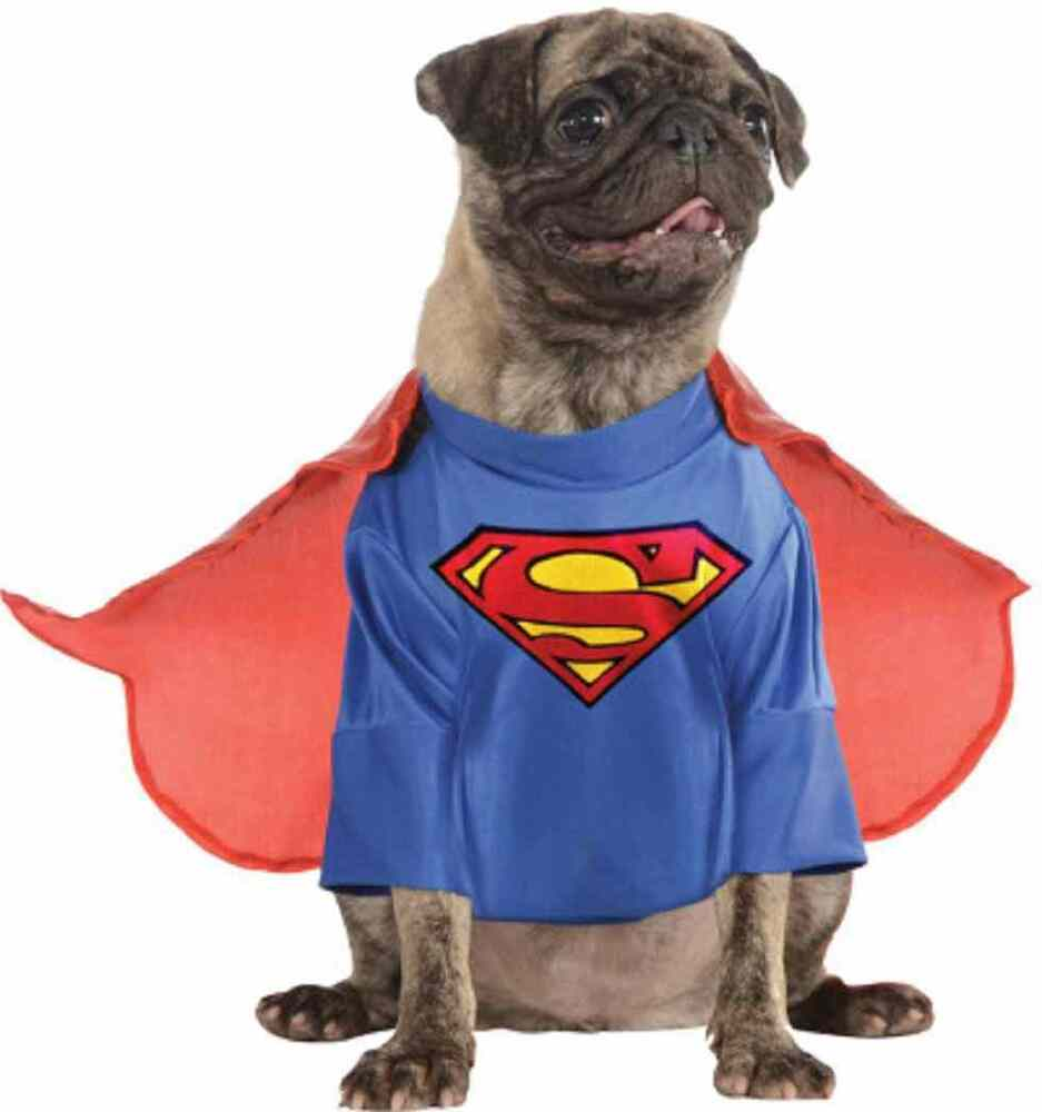 Superman Man of Steel Superhero Fancy Dress Up Halloween