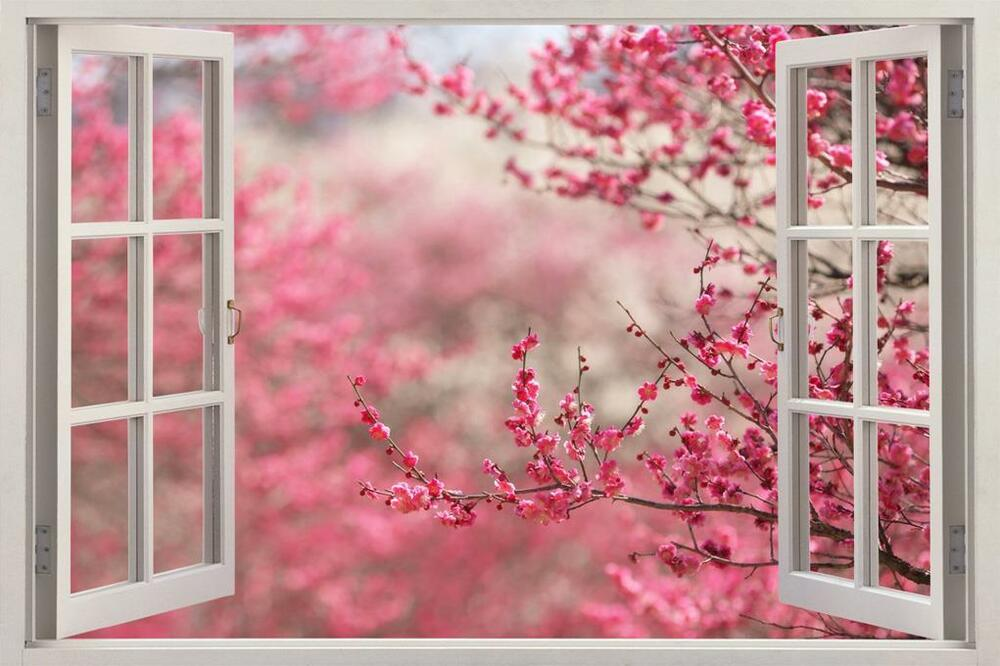 3d Removable Wallpaper Cherry Blossom 3d Window View Decal Wall Sticker Home