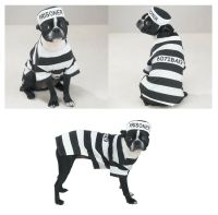 PRISON COSTUMES for DOGS