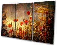 Floral Poppies Flowers TREBLE CANVAS WALL ART Picture ...