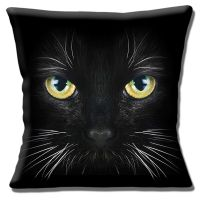 BLACK CAT YELLOW GREEN EYES WHITE WHISKERS PHOTO PRINT 16 ...