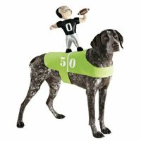 Dog Football Player Costume Plush Pet Rider Superbowl
