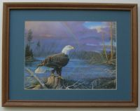 Eagles Pictures Birds Framed Country Picture Print Art ...