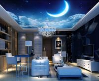 3D Moon Night Sky Ceiling WallPaper Murals Wall Print ...