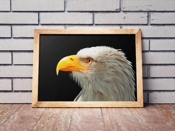 Eagle Head Wall Art Print,Adult Bald Eagle Printable Poster,Instant Art,  American Eagle,Office Living Room Decor