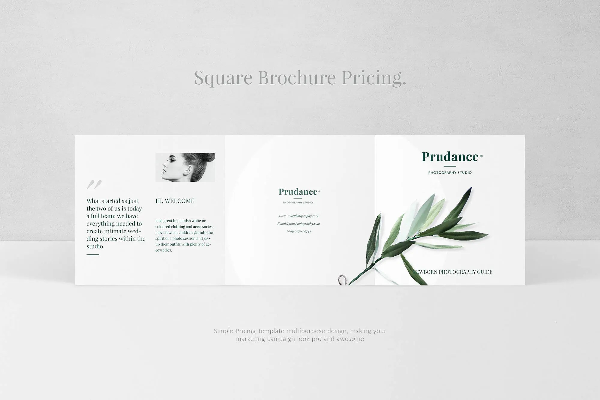 Newborn Pricing Brochure Baby Trifold Brochure Photographer Etsy