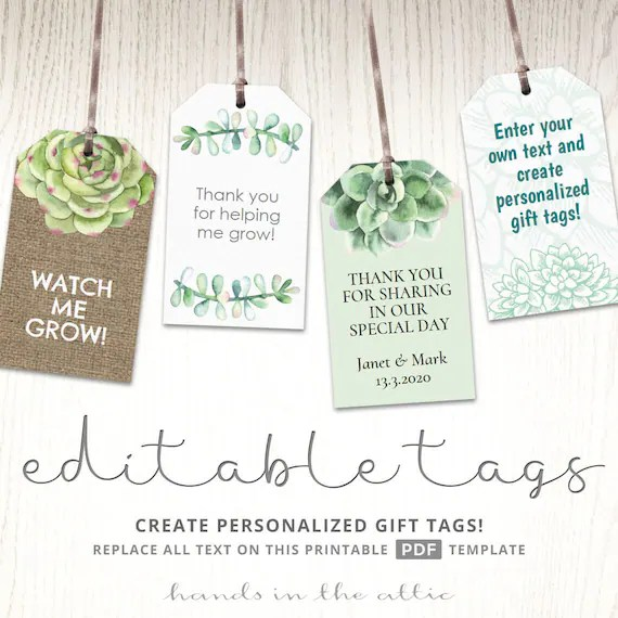 Succulent plant labels gift tags potted cactus seeds, watch me grow