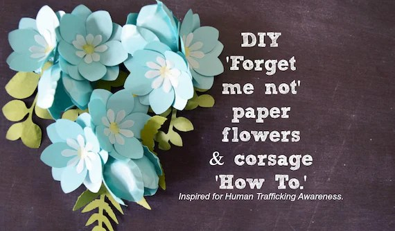 Small DIY Paper Flower Templates  Tutorial, Forget me not, Paper