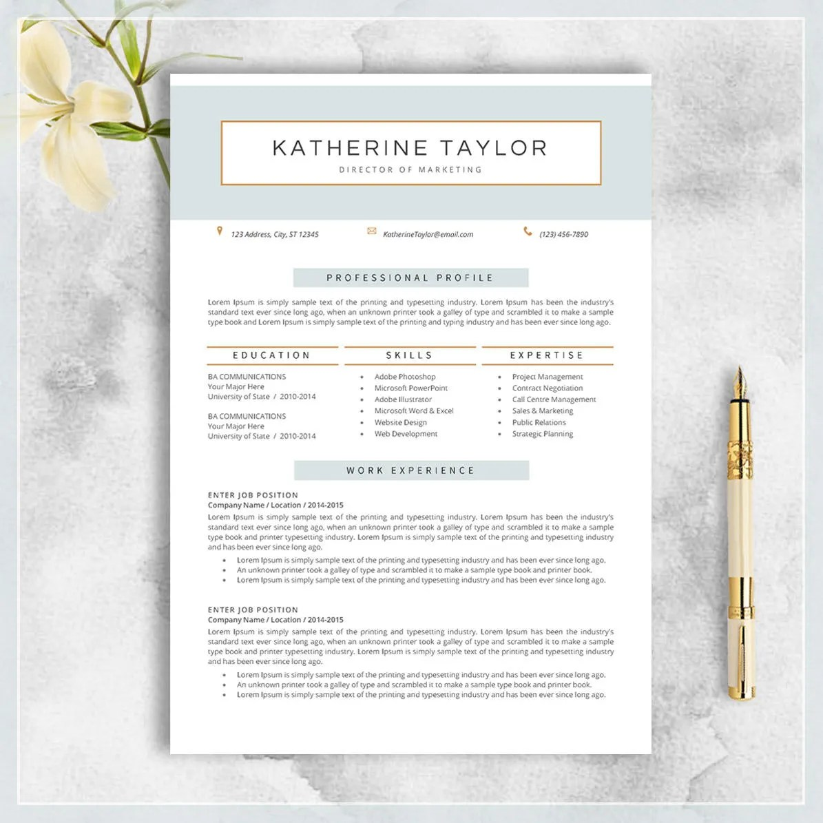 Professional Resume Template CV Template for MS Word Etsy