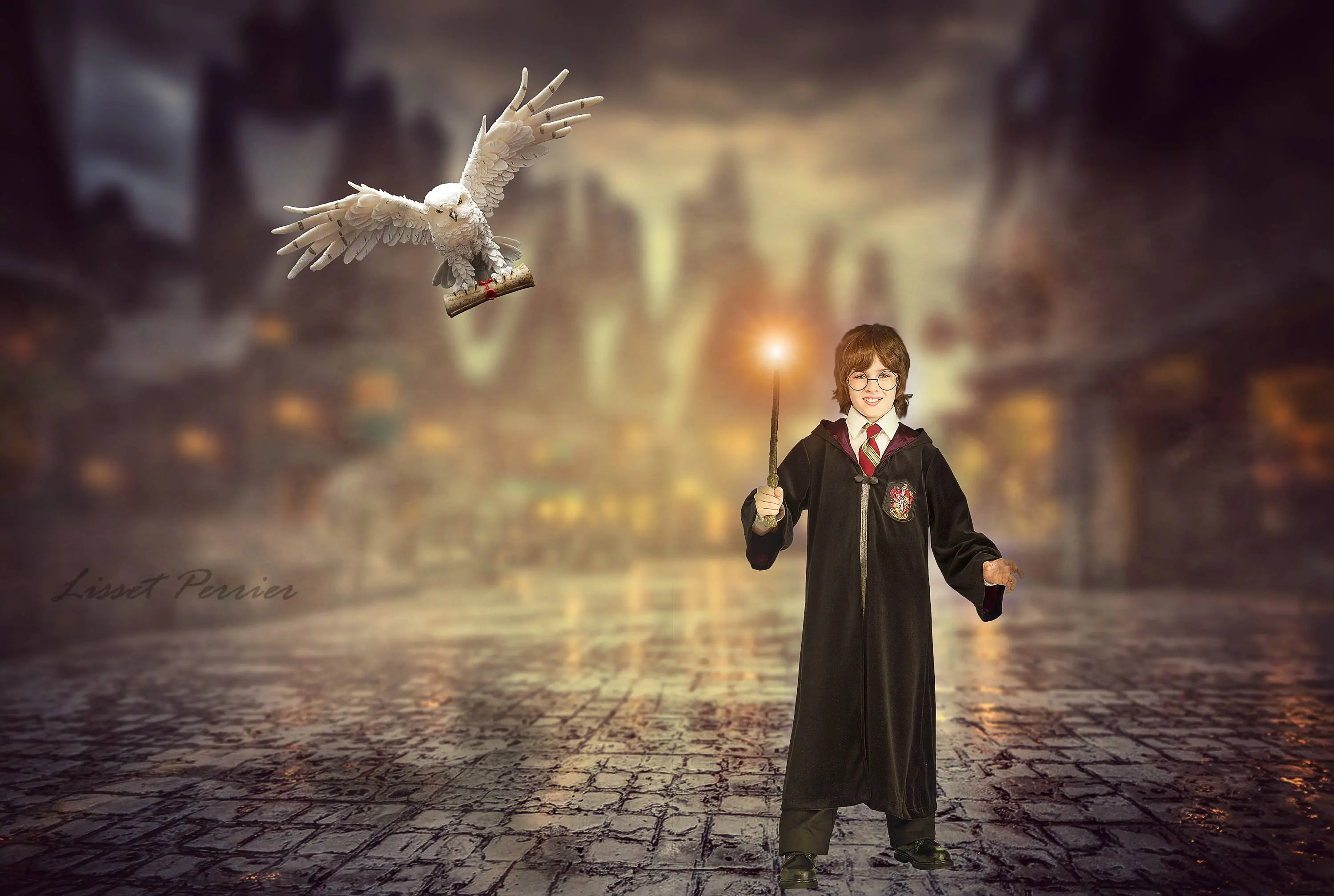 2 Harry Potter Digital Background /backdrop/digital composite Etsy