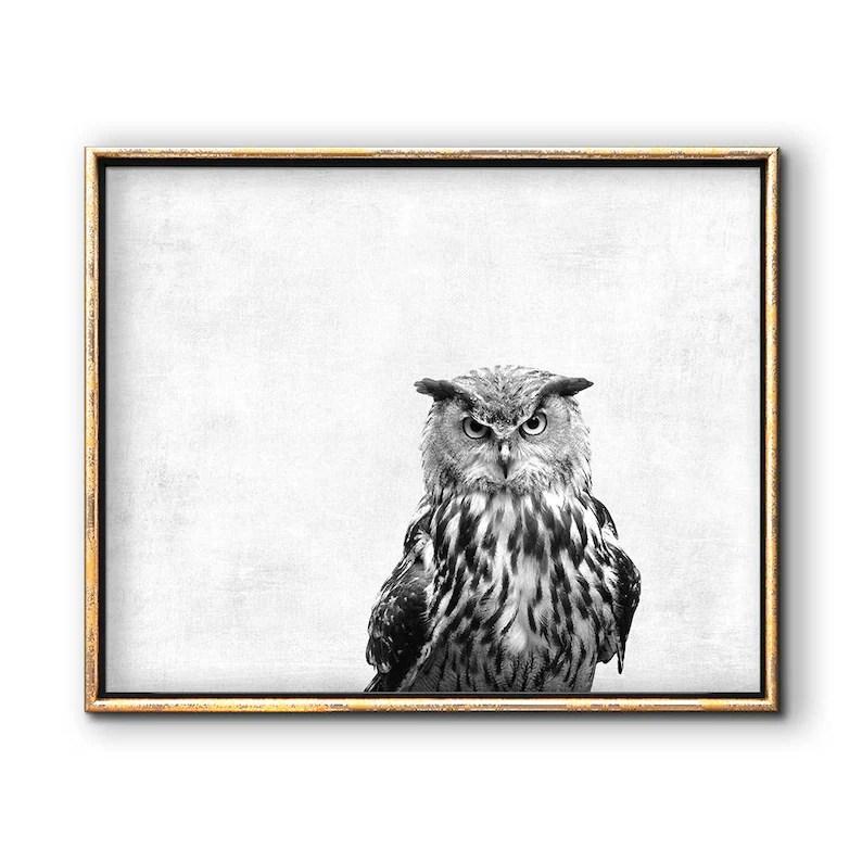 Owl Artwork Owl Printable Downloadable Prints Bird Etsy
