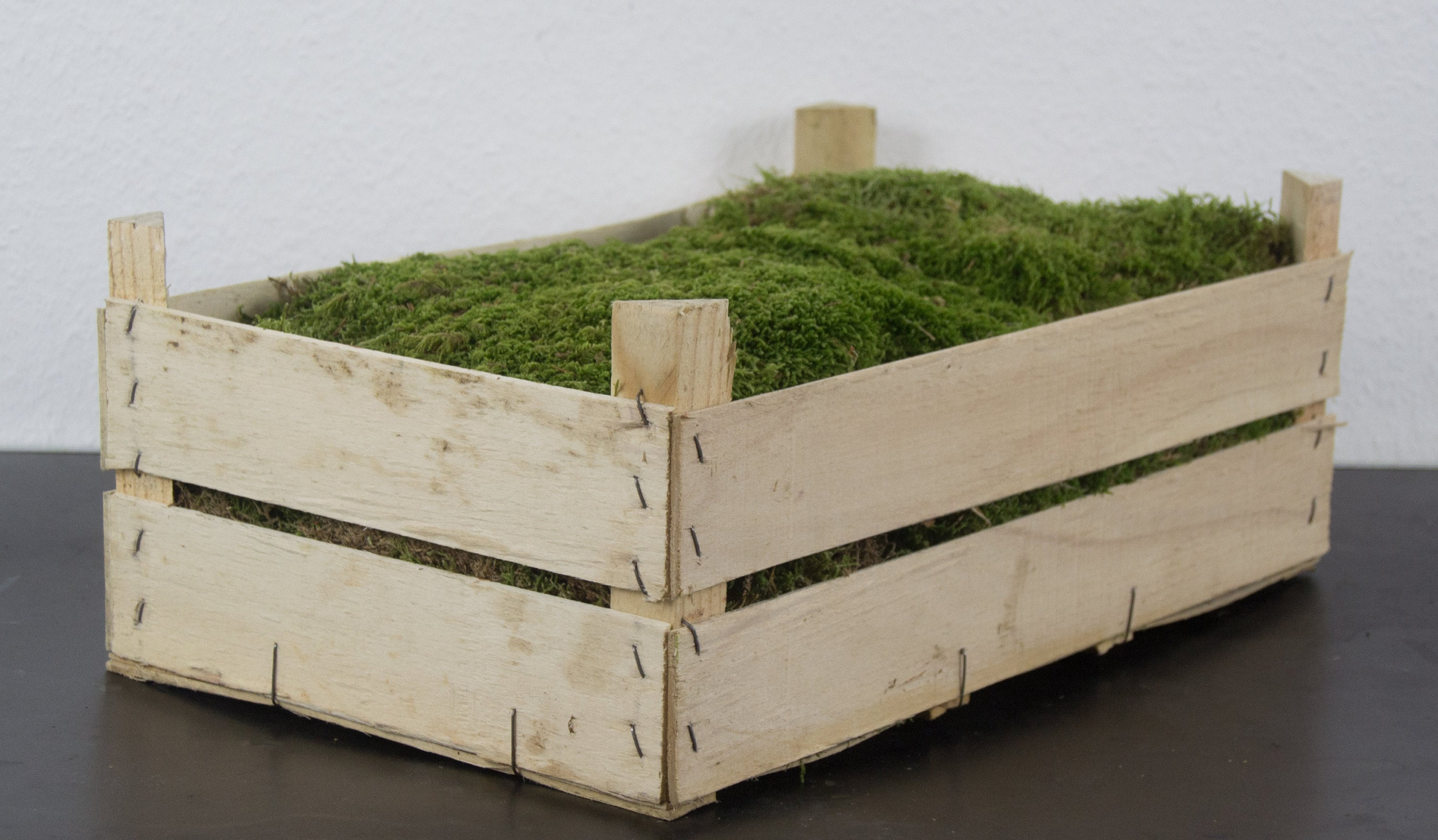 Ebay Wanddeko Buy Crate Deco Moss Natural Moss Plates For Florists Real Forest Moss In The Package Lots Of Moss Plates For Decorating For Tinkering