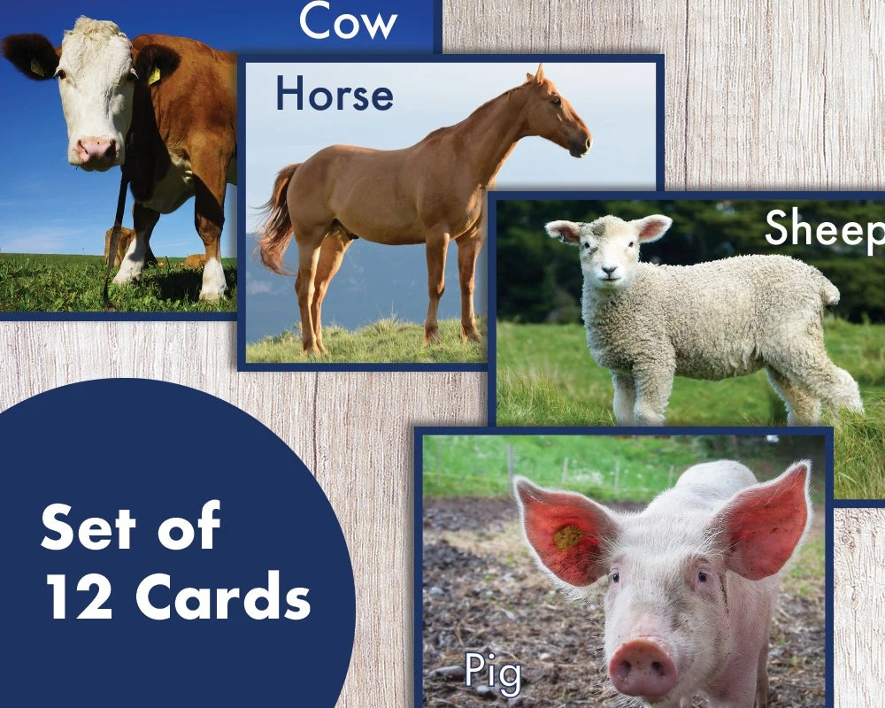 Printable Realistic Farm Animal Flash Cards Learning Cards Etsy