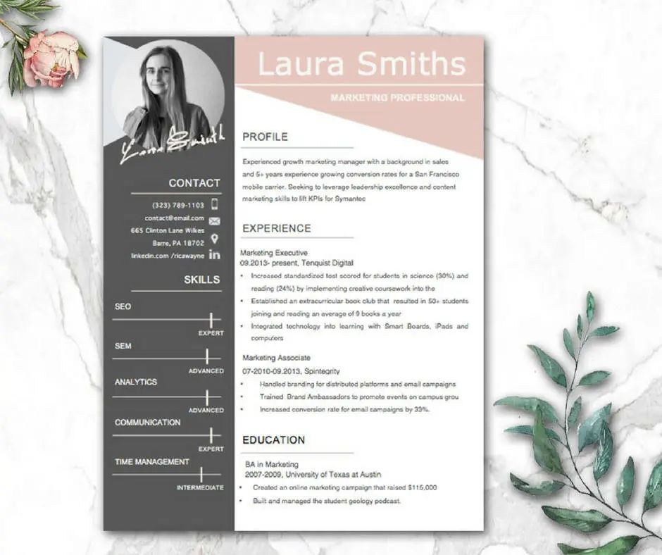 templates cv word design