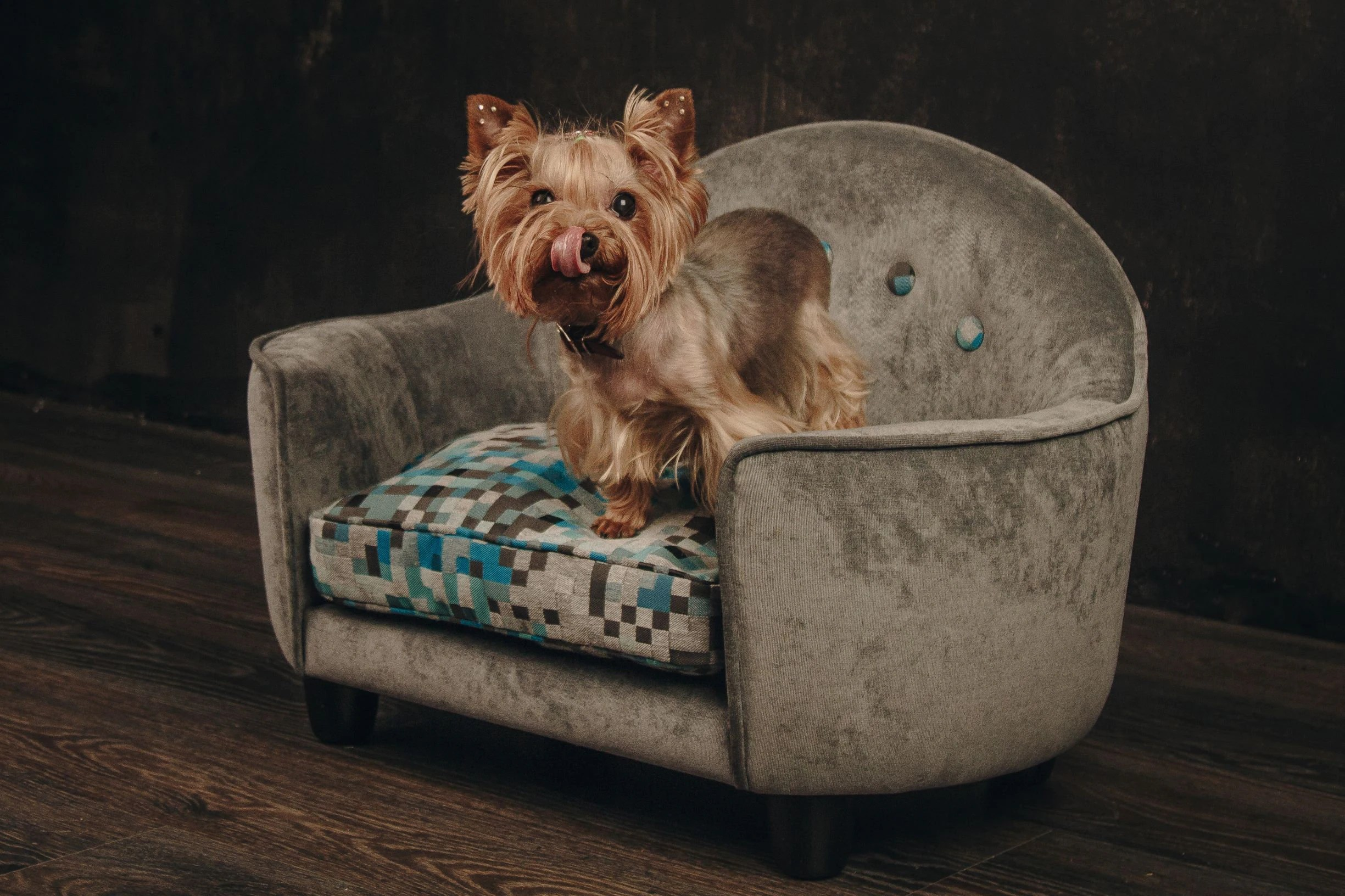 Dog Beds Pet Luxury Dog Bed With Memory Foam Orthopedic Dog Bed Pet Bed Dog Beds Raised Dog Bed Pet Furniture Small Dog Bed Bed For Dogs