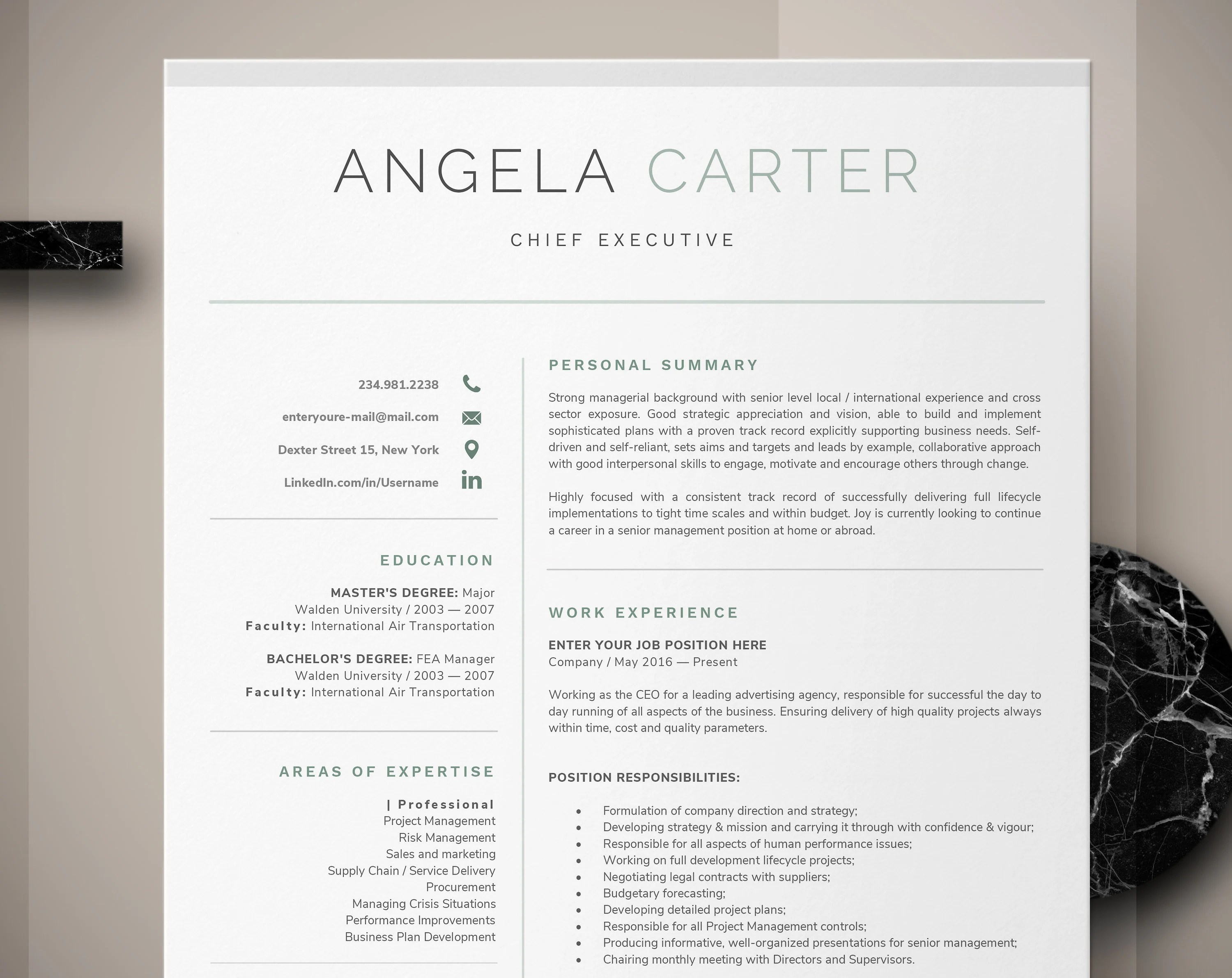 One Page Executive Resume Template Instant Download CV Etsy