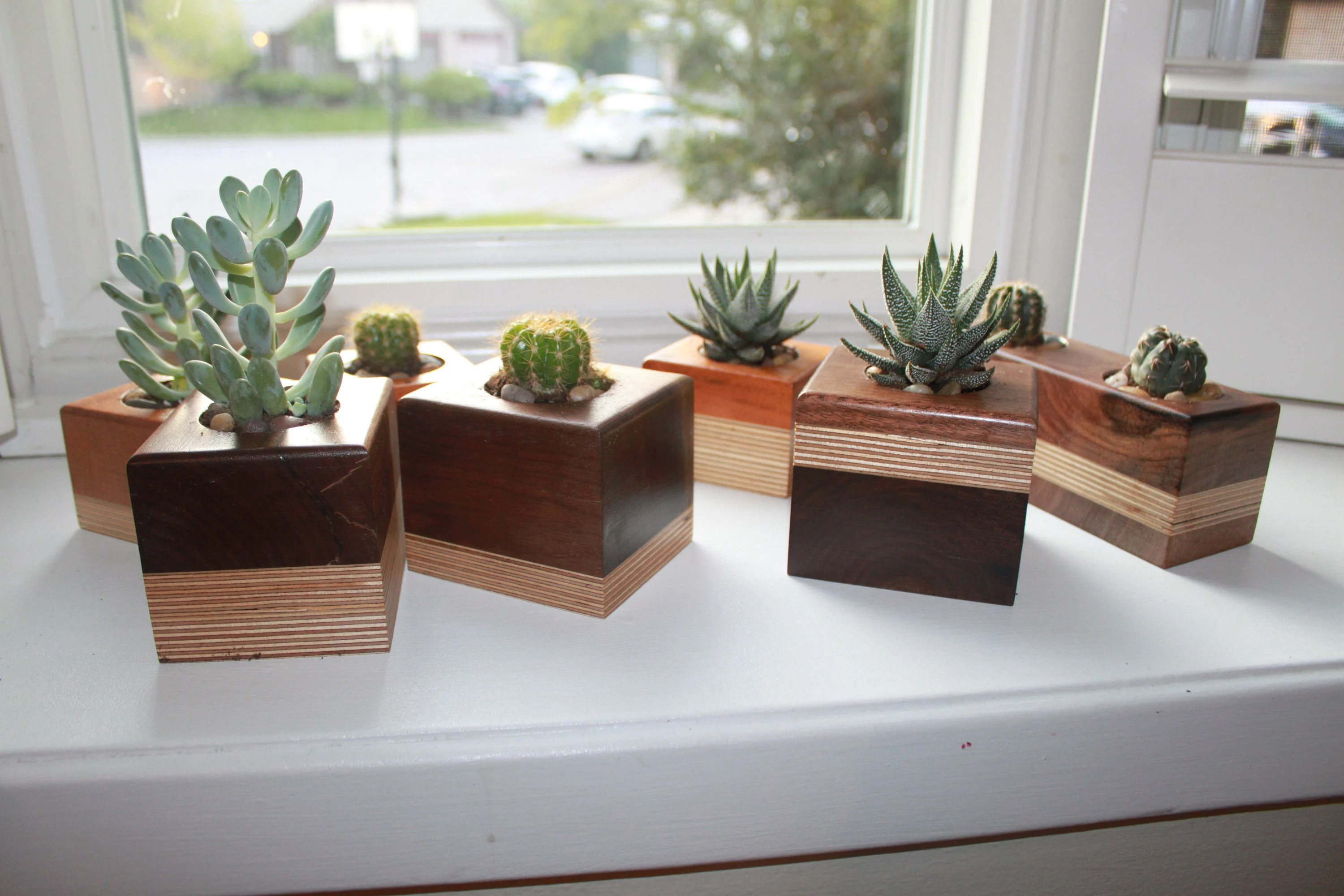 Weinregal Cactus Succulent Planters Unique Wood Cactus Succulent Planters Mother S Day Gift Wedding Anniversary Gift