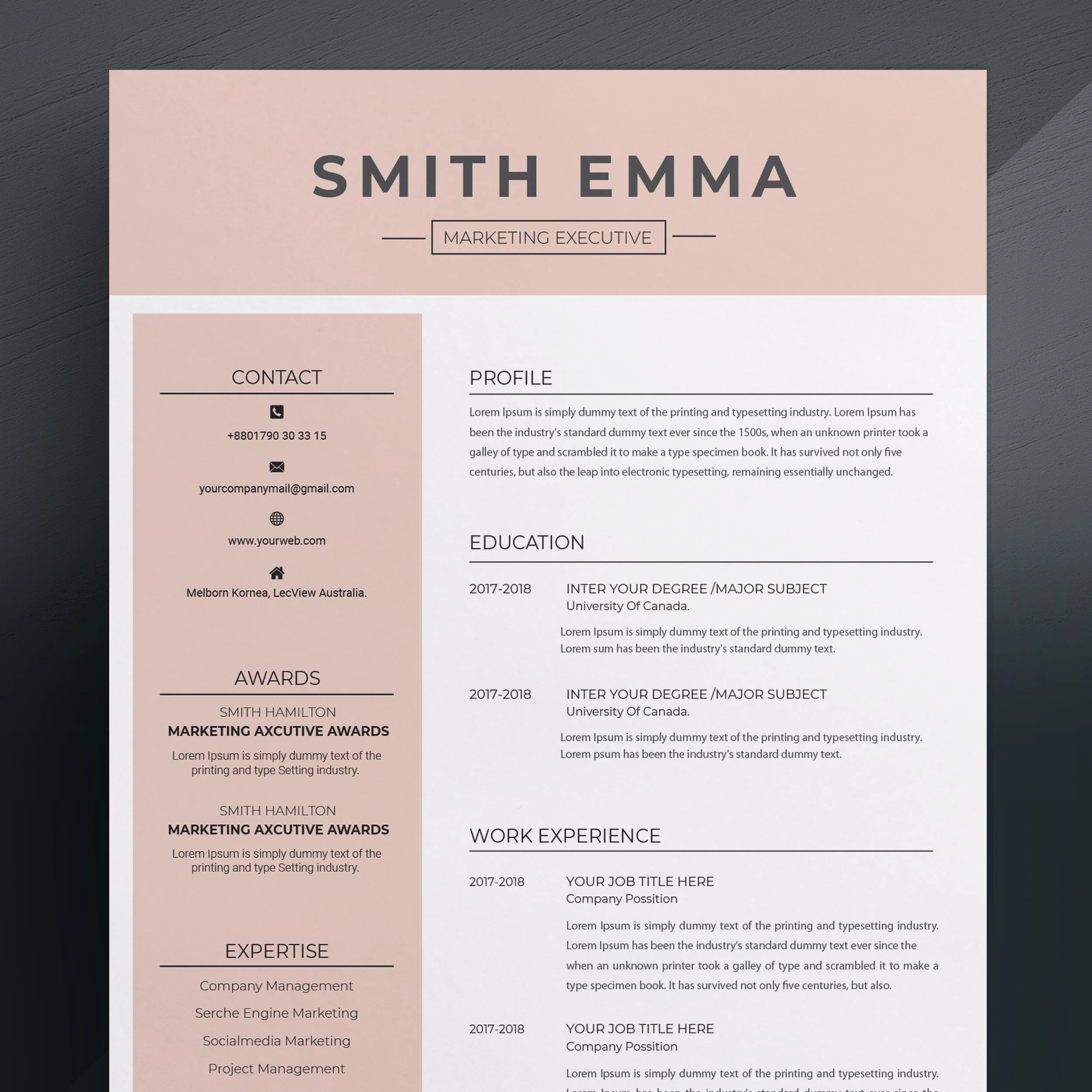 Modern  Professional Resume Template / CV Template Cover Etsy