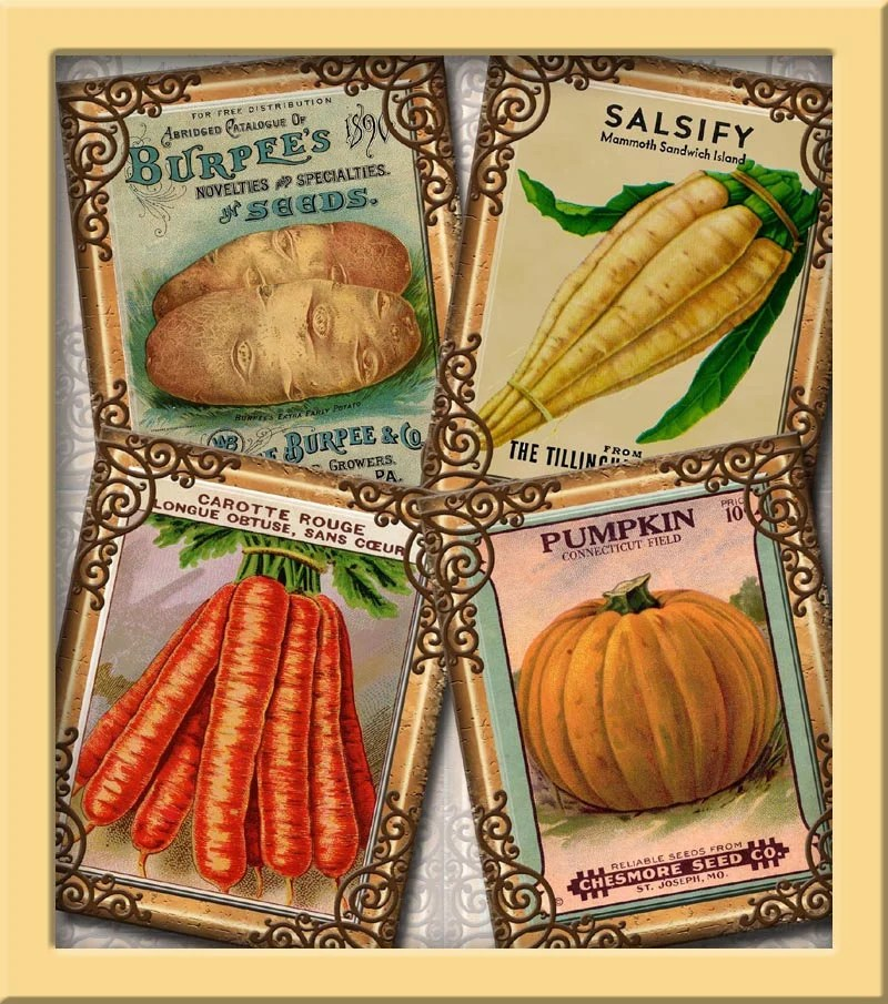 VeGeTaBLe SeeD PaCkETs ViNtAgE ArT 4\