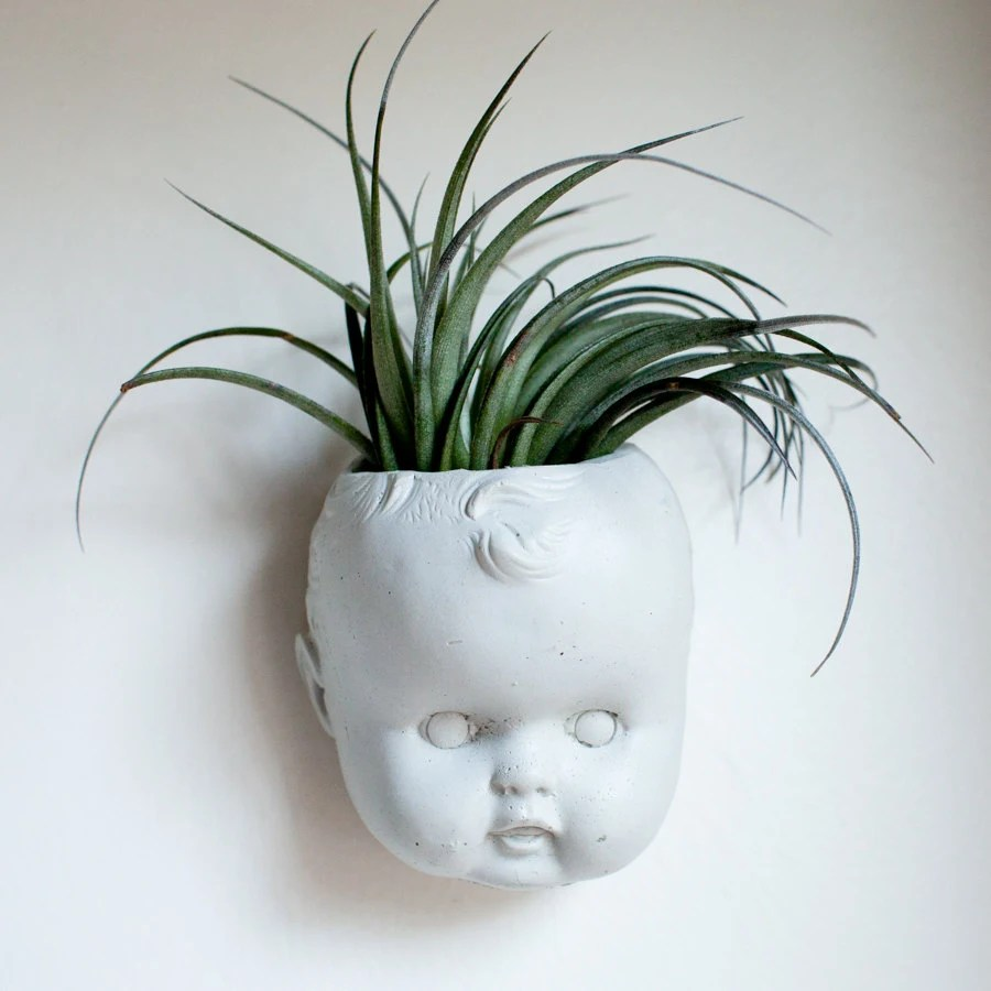 Head Planters Doll Head Wall Planter Concrete Baby Head Air Plant Succulent