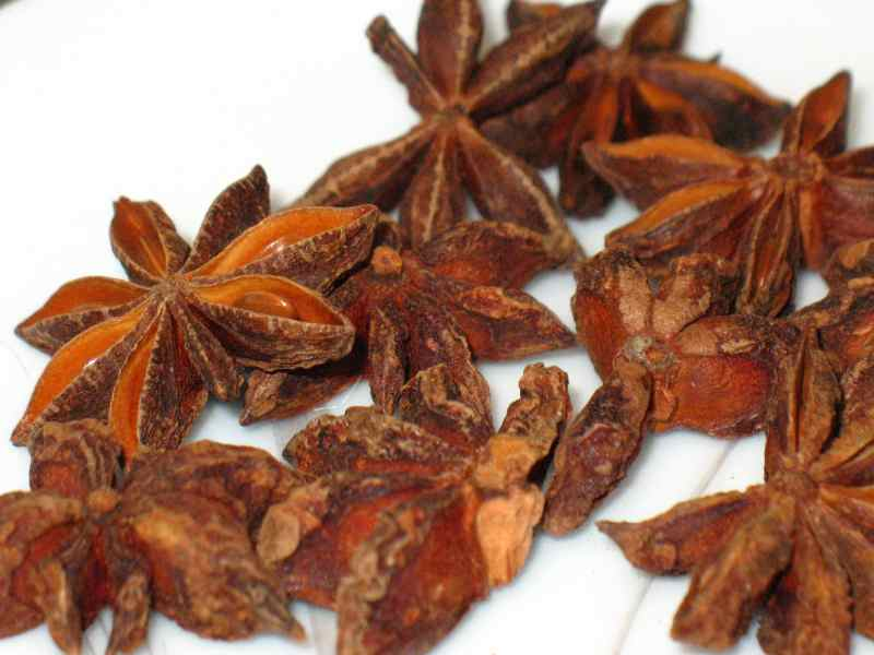 Large Of Star Anise Plant