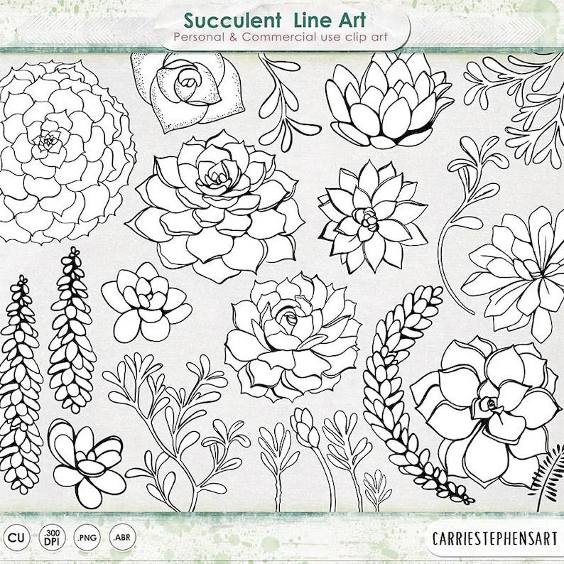Succulent Line Art Printable ClipArt Outline Succulent Etsy
