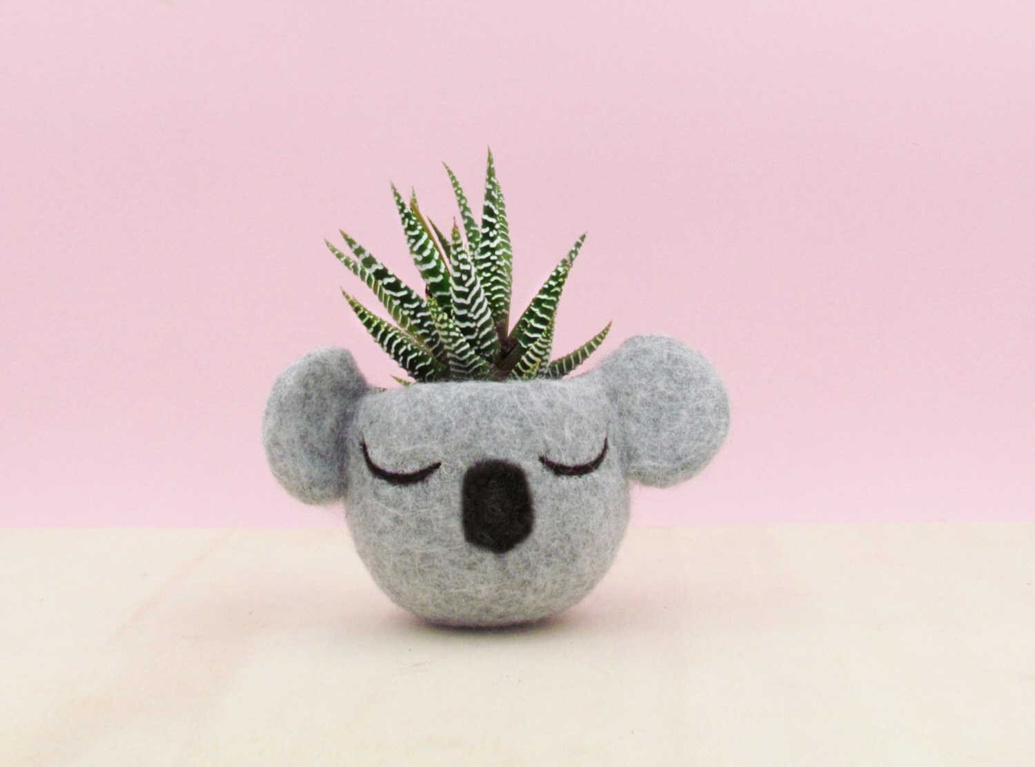 Cubicle Wall Planter Koala Bear Succulent Planter Cubicle Decor Teacher Gifts Plant Pot Cute Planters Pots Fall Decor Desk Decor Personalized Gift