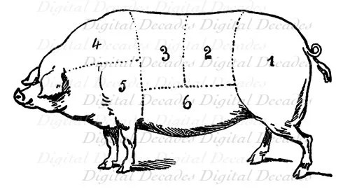 Pork Pig Cochon Butcher Meat Cut Chart Cooking Digital Image Etsy