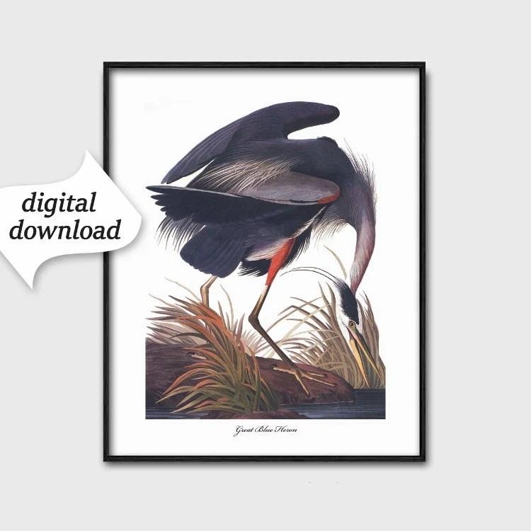 Printable Bird Print Download Great Blue Heron Art Ocean Etsy