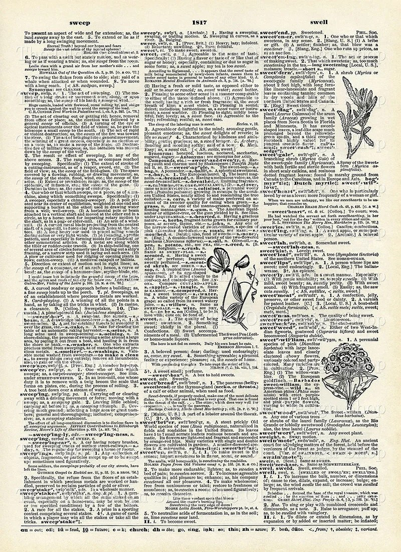 photograph regarding Printable Vintage Dictionary Pages named Printable Dictionary Web site Sweep Sweepstakes Cute Sweetheart