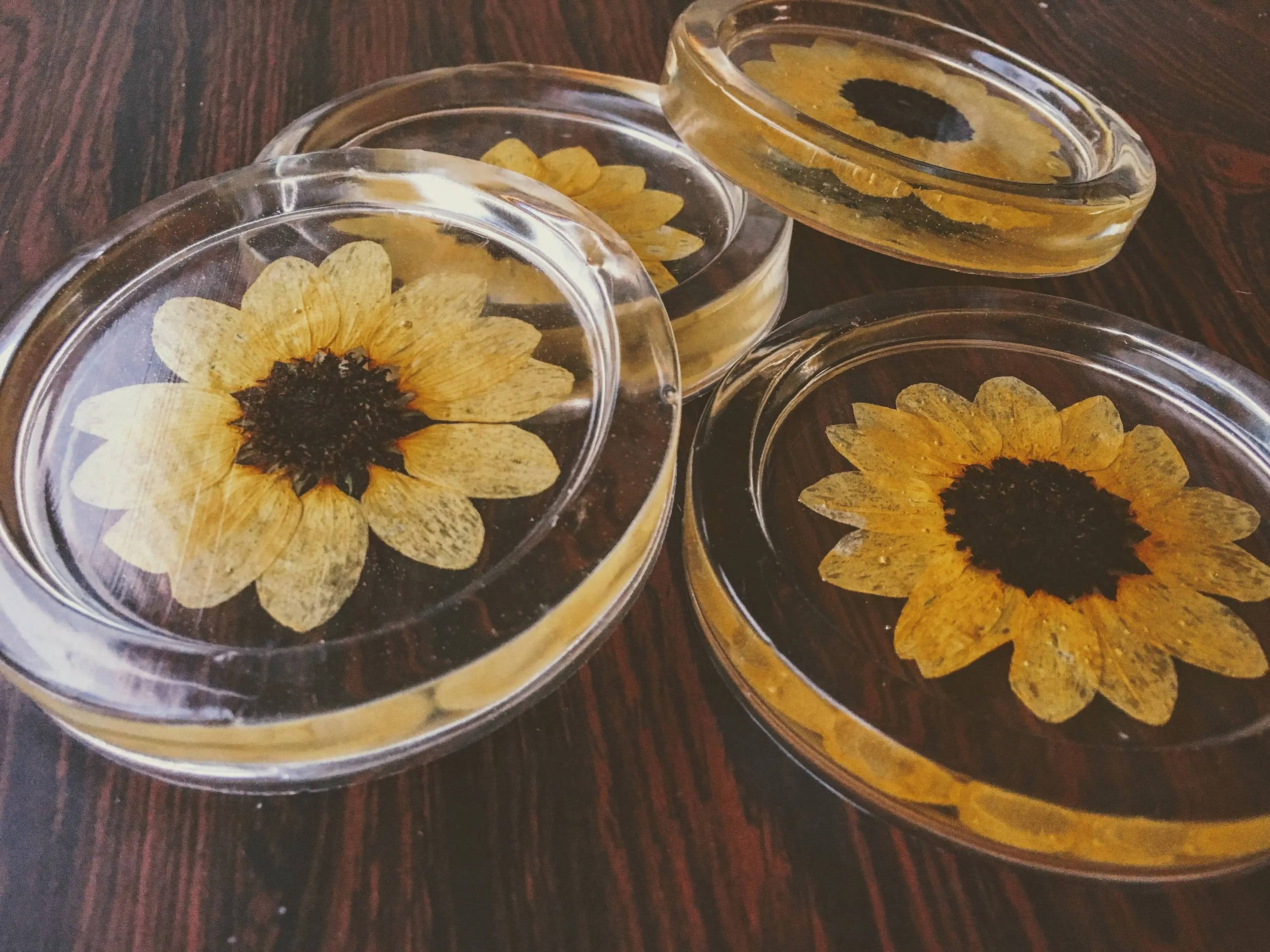 Where To Buy Coasters Set Of 4 Genuine Preserved Sunflower Resin Coasters Etsy