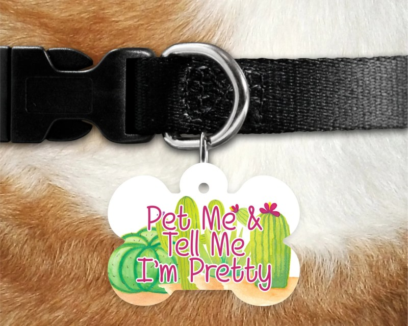 Large Of Funny Dog Tags