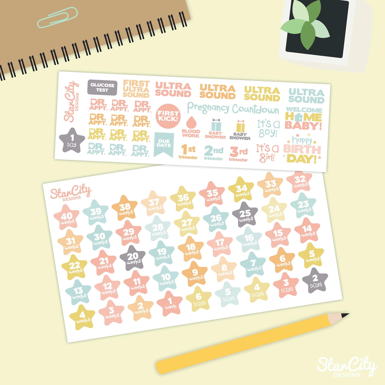 Pregnancy Tracker Planner stickers Bullet Journal Bujo baby Etsy