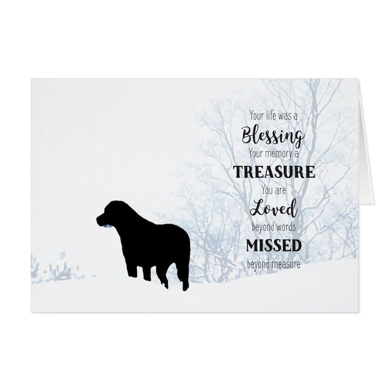 Black Lab Dog Sympathy Card 06BTLM Pet Loss Dog Condolence Etsy