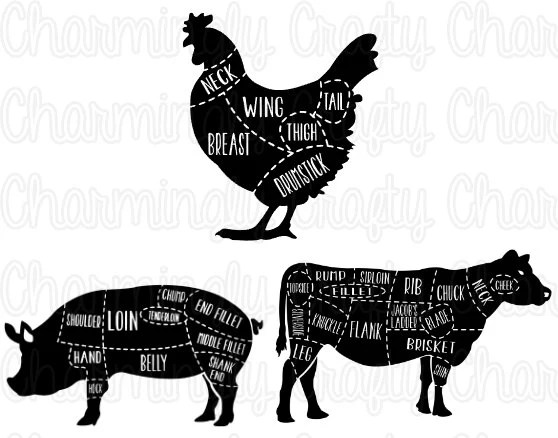 Chicken Pork Beef Pig Cow Poultry Meat Cut Chart SVG PNG Etsy