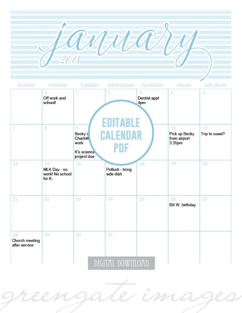 2018 Printable Fillable Calendar editable calendar 2018 Etsy