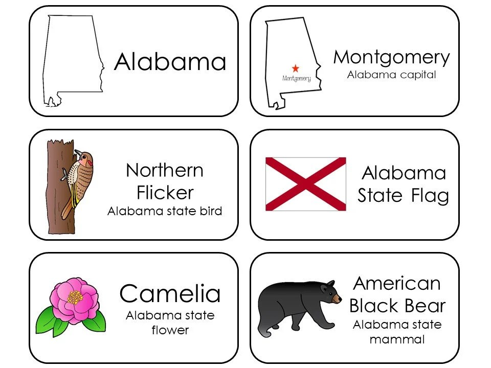 300 State Symbols Printable Flashcards State Capital Etsy