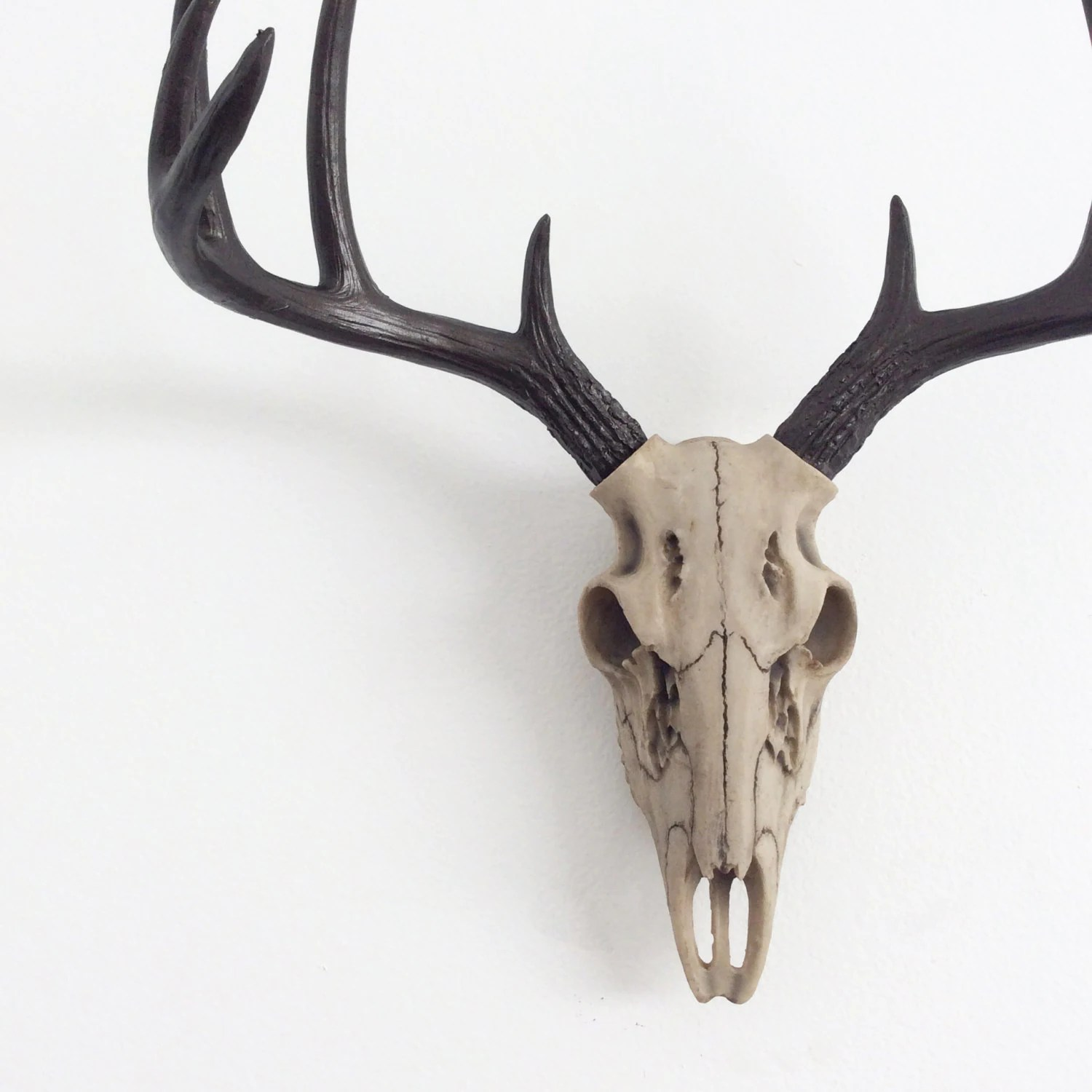 Fake Deer Skull And Antlers Any Color Faux Deer Skull Wall Hanging Faux Taxidermy