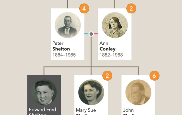 Trace your Family Tree Online Genealogy  Ancestry from Findmypast - build family tree online