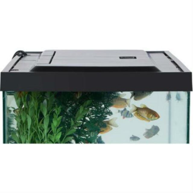 20 gallon aquarium weight aquarium sizes and weights for 20 gallon fish tank dimensions