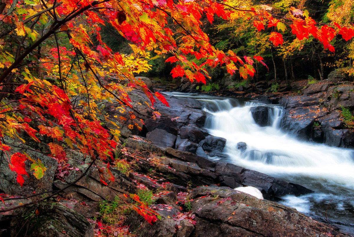Fall Scenes Wallpaper With Pumpkins Fall Photos In Canada Remind You Why It S The Greatest Season
