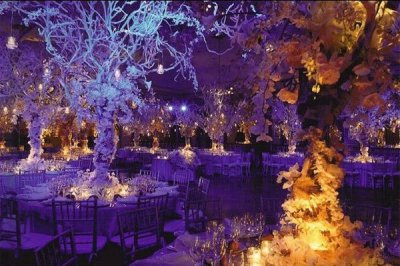 24 Weddings That Really Brought The Wow Factor With ...