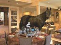 Horse Wanders Through Living Room In Listing Photo For $6 ...