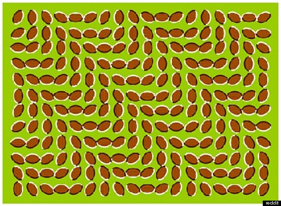 Wallpaper Seram 3d 10 Optical Illusions That Will Blow Your Mind Photos