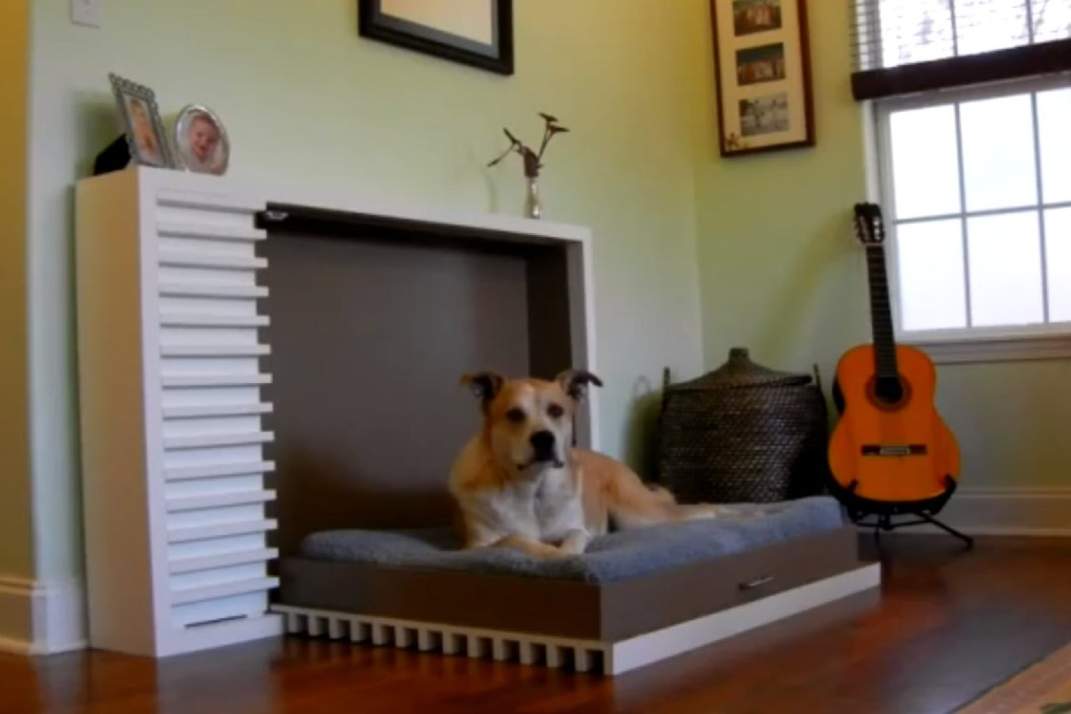 Fold Out Beds For Small Spaces The Modern Fold Out Pet Bed By Murphy 39s Paw Design Is